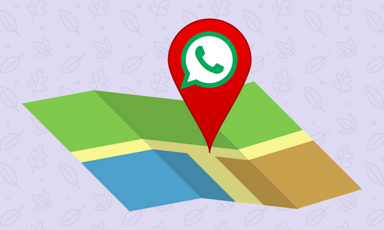 how to share live location whatsapp